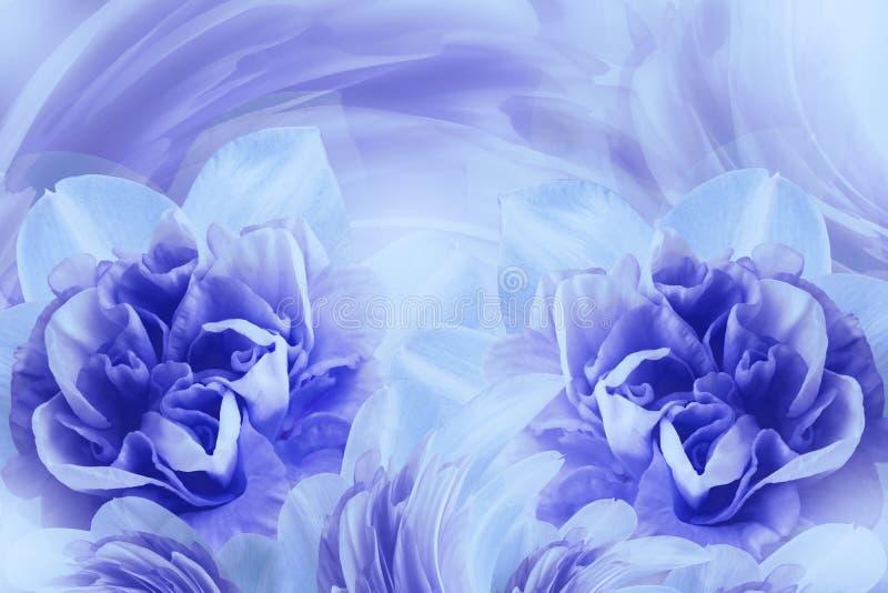 De lenteachtergrond van zacht blauw-violette bloemen van narcissuses Close-up royalty-vrije stock afbeeldingen