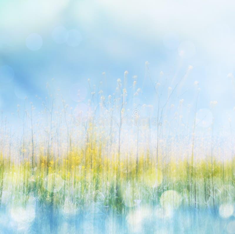 De lentebloem en Bokeh royalty-vrije stock afbeeldingen