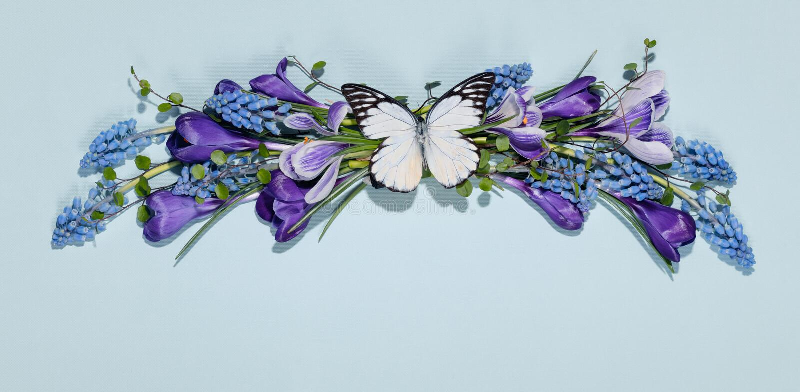De lentebloem met vlinder stock foto