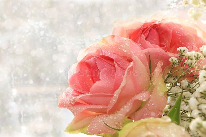 De lentebloem op samenvatting vage achtergrond met bokeh royalty-vrije stock fotografie