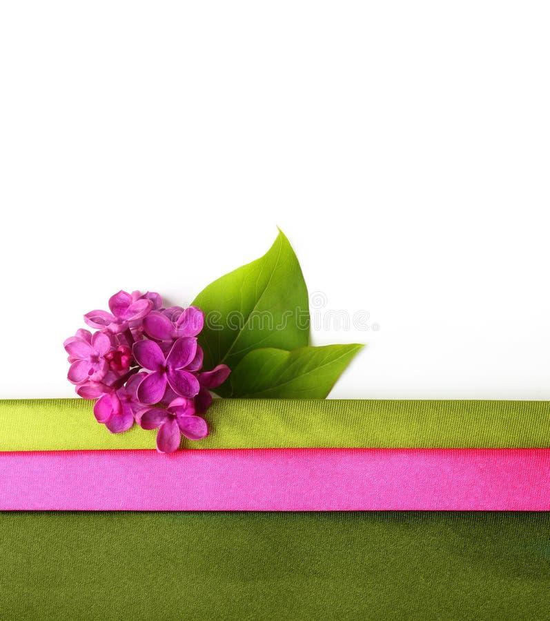 De lentebloem, takje purpere sering met blad royalty-vrije stock afbeelding