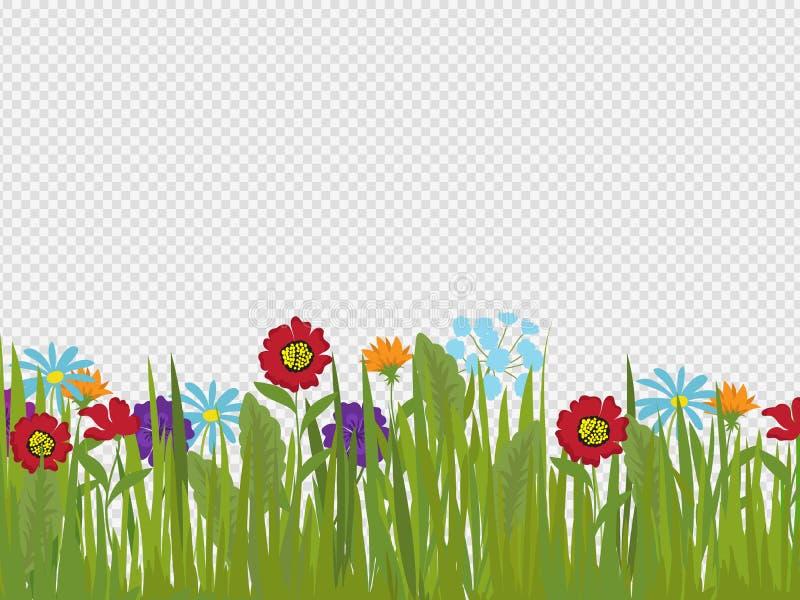 De lentebloemen en grasgrens die op transparante achtergrond wordt geïsoleerd royalty-vrije illustratie