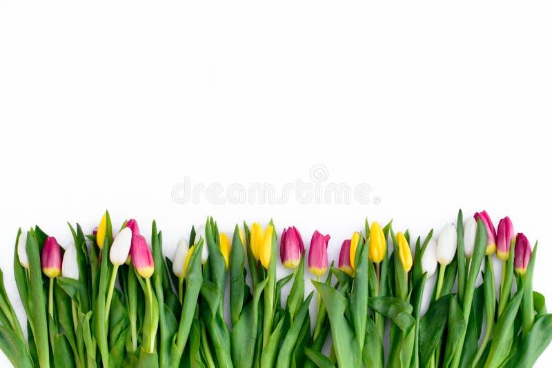 De lentebloemen op de Raad stock foto