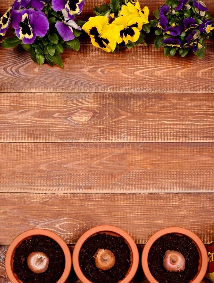 De lentebloemen op houten lijst Kersenbloesem royalty-vrije stock foto's