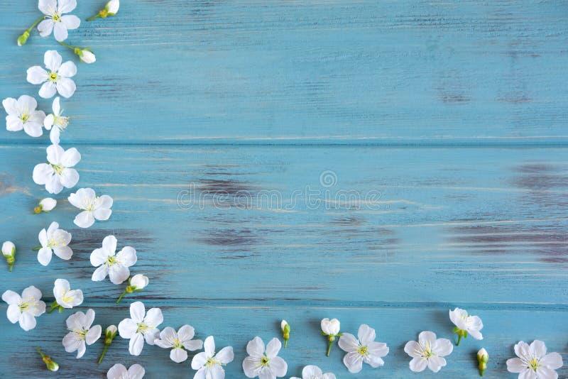 De lentebloemen van kers op een houten achtergrond met een plaats voor een inschrijving Ontwerp voor groetkaart met kersenbloemen royalty-vrije stock foto