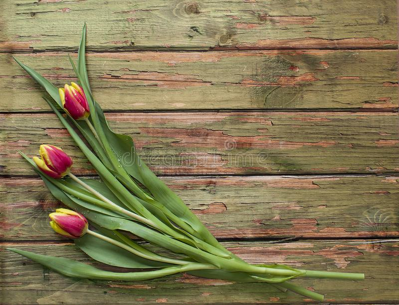 De lenteboeket van drie tulpenbloemen op houten achtergrond vlak leg mening met exemplaarruimte royalty-vrije stock afbeeldingen