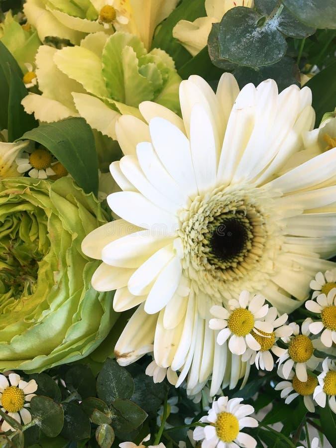 De lenteboeket van gemengde kleurrijke bloemen Bloemenboeket met inbegrip van chrizantemos, decoratieve brassica, roze rozen royalty-vrije stock foto