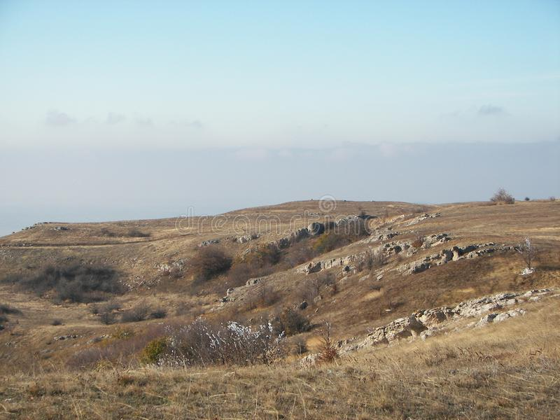 De lentebos in de ochtend in de Krimbergen stock foto