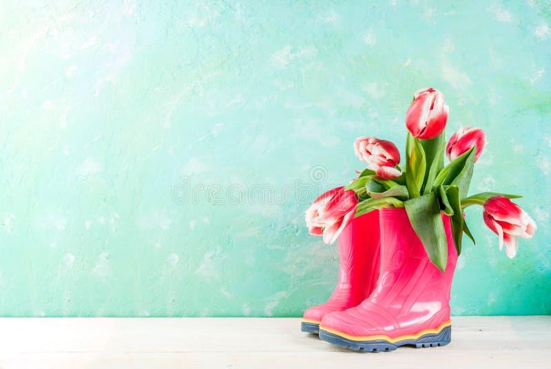 De lenteconcept met tulpen stock foto's