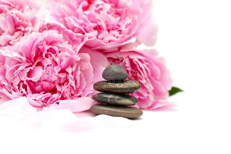 De lenteconcept van de schoonheid met bloem en stenen stock foto