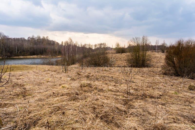 De lentegebied met droog gras en bomen zonder gebladerte, bosmeer, bewolkte dag in de vroege lente stock foto's