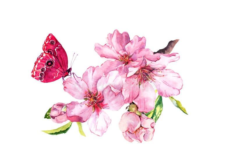 De lentekers, sakurabloemen of roze appelbloesem en vlinder Bloei waterkleur royalty-vrije illustratie