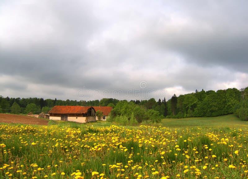 De lentelandschap royalty-vrije stock fotografie