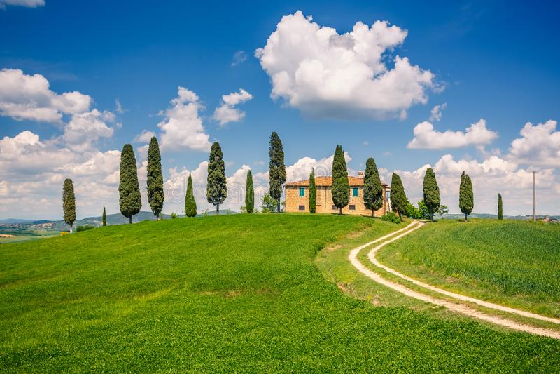 De lentelandschap van Toscani? stock afbeelding