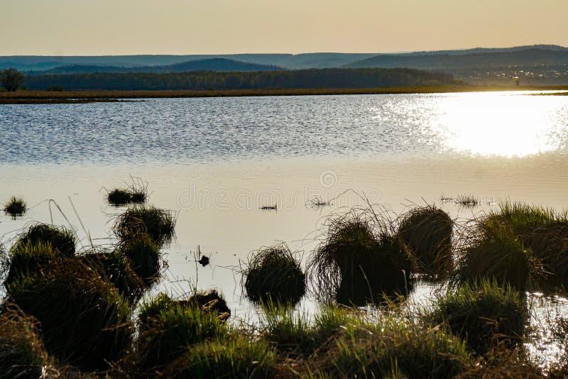 De lentemeer bij middag royalty-vrije stock foto