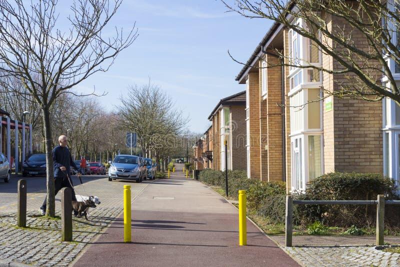 De lentemening bij het gebied van de Twee Mijlas in Milton Keynes, Engeland royalty-vrije stock foto