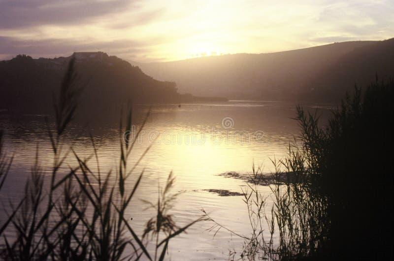De lenteochtend door het meer stock foto's