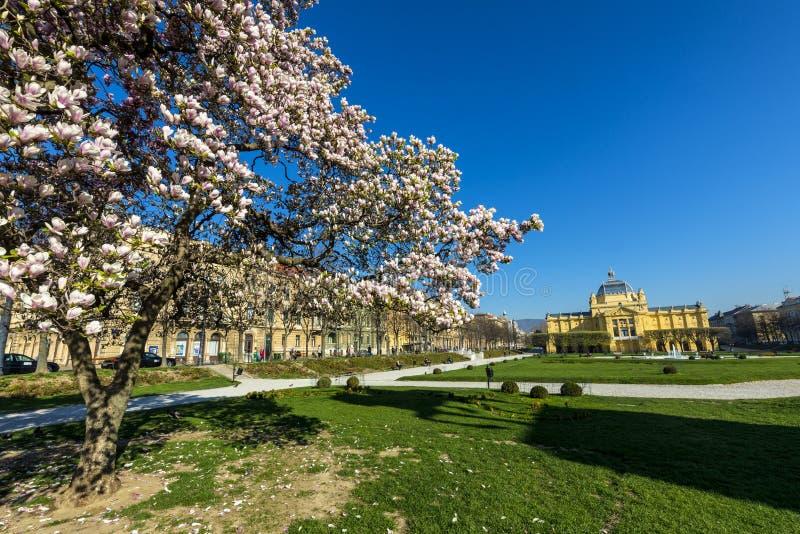 De lenteochtend in Zagreb stock foto's