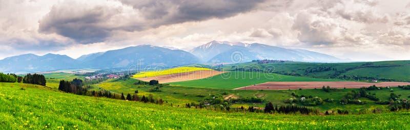 De lenteonweer in bergenpanorama Paardebloemweide royalty-vrije stock foto