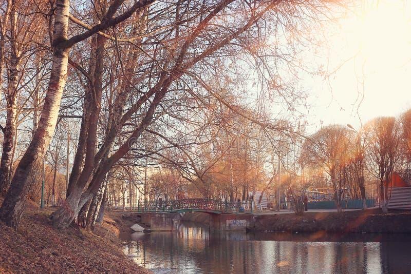 De lentepark van het vijverlandschap stock fotografie