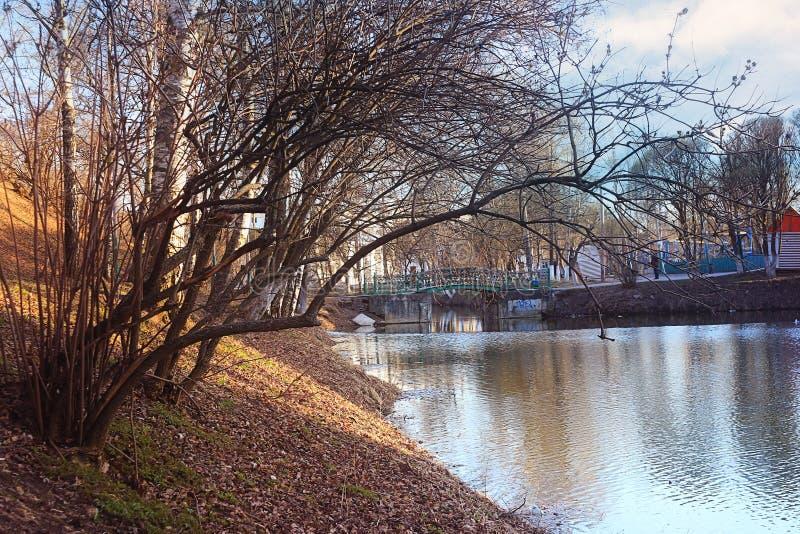 De lentepark van het vijverlandschap royalty-vrije stock fotografie