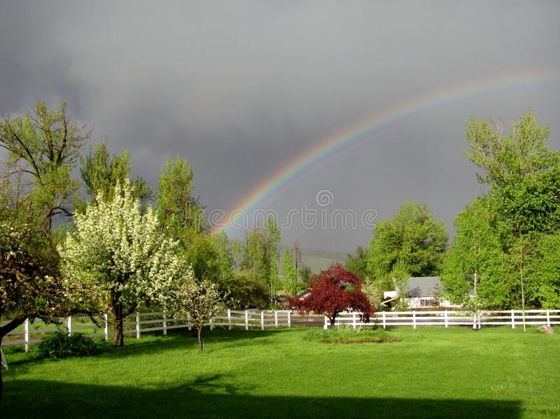 De lenteregenboog stock afbeelding