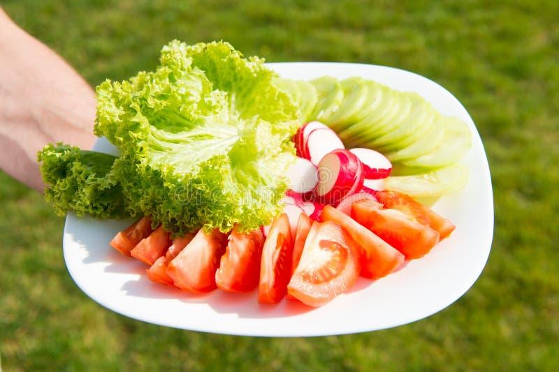 De lentesalade De de gehakte radijs en sla van de tomatenkomkommer Verse die salade van inlandse organische groenten wordt gemaak royalty-vrije stock foto's