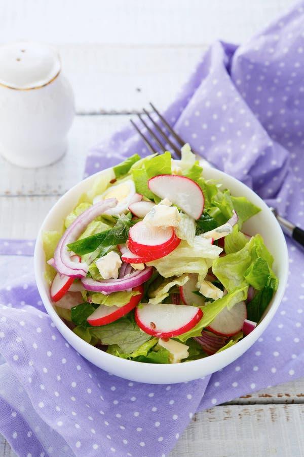 De lentesalade met radijzen royalty-vrije stock foto