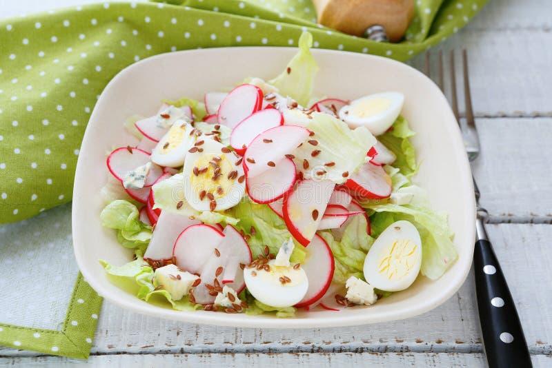 De lentesalade met radijzen stock afbeelding