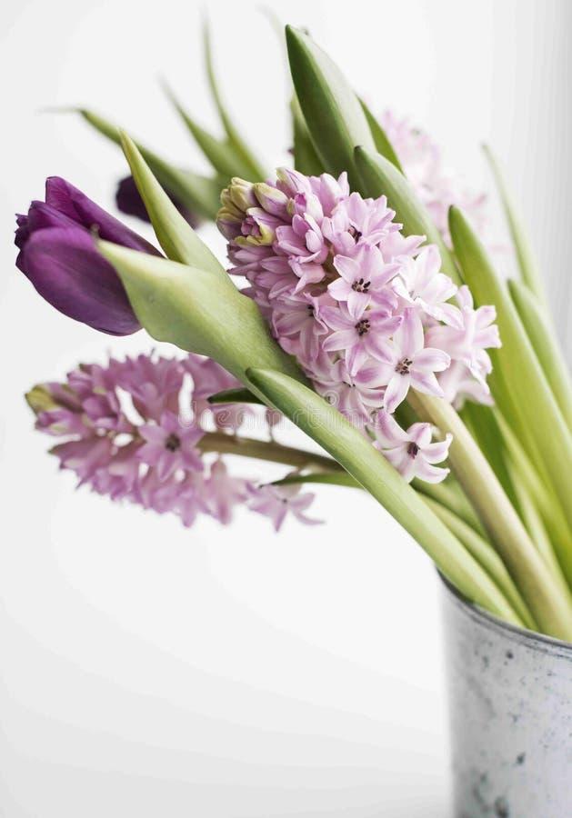 De lentesbloemen stock foto's