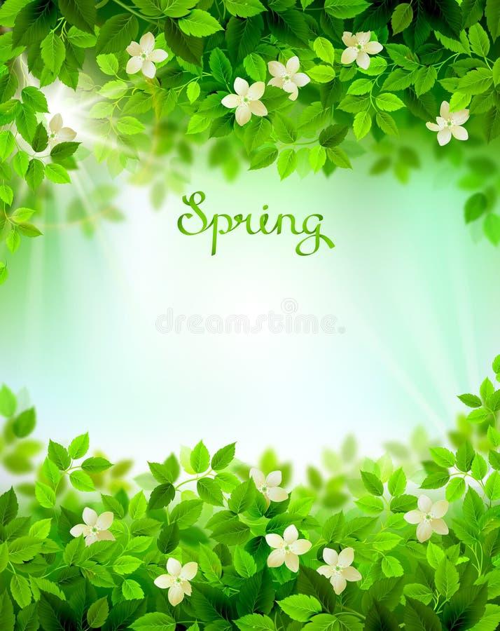 De lentetakken met verse groene bladeren Seizoenachtergrond door bloemenelementen wordt ontworpen dat stock illustratie