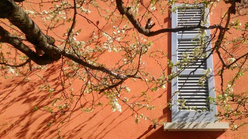De lentetijd in Italië royalty-vrije stock afbeelding