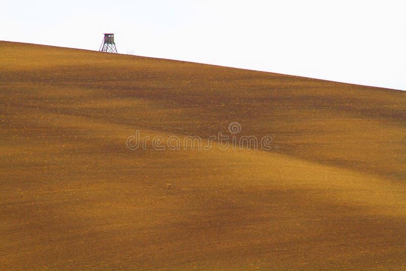 De lentetijd in Moravian Toscani?, de wijngebied van Zuidenmoravian stock afbeeldingen