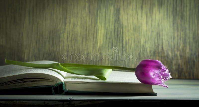 De lentetulpen op een oud boek Houten achtergrond royalty-vrije stock afbeeldingen