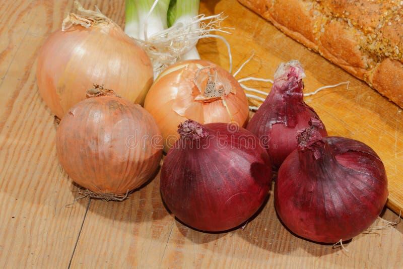 De lenteuien, uien, groenten stock foto