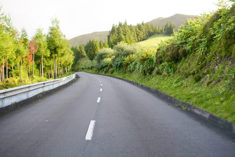 De lenteweg - de Azoren stock afbeelding