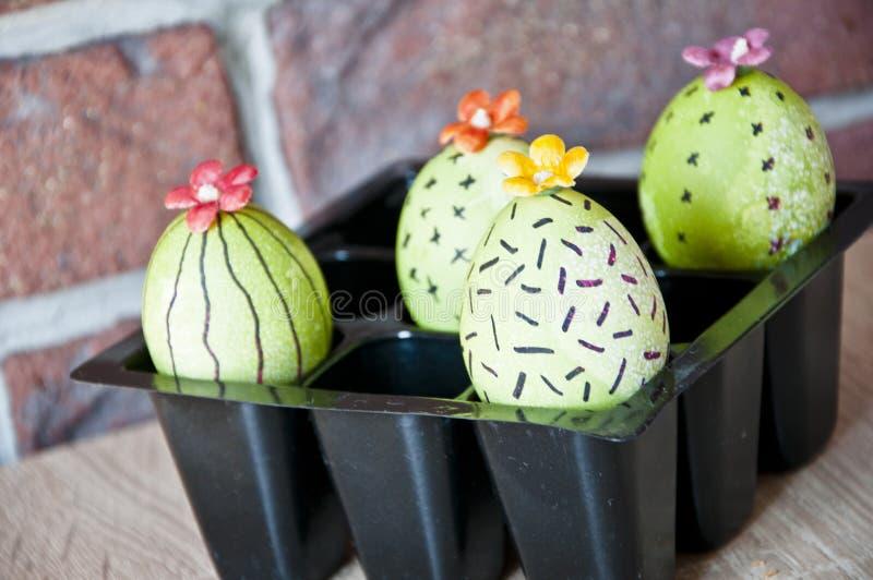 De lentezaailingen serre Cactus het bloeien Gelukkige Pasen-vakantie Natuurlijke kleurstof Het beeld wordt gemaakt in a Het groen stock afbeeldingen