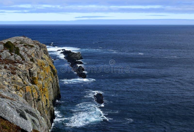 De lentezeegezicht langs de Sleep van VaderTroy ` s in Newfoundland Canada, dichtbij Flatrock stock foto's