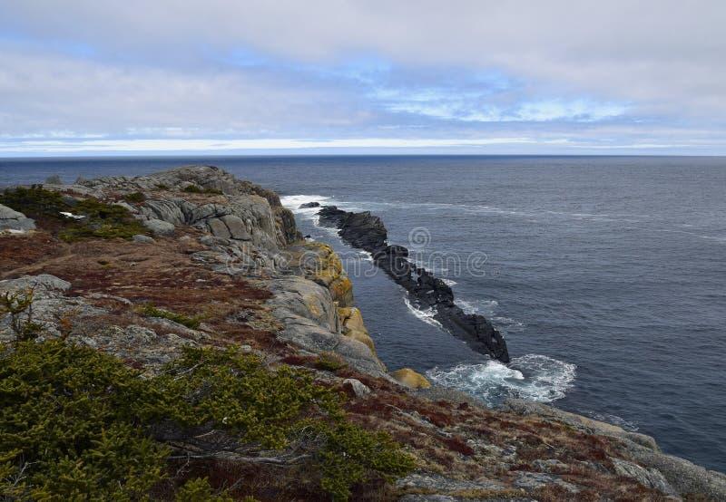 De lentezeegezicht langs de Sleep van VaderTroy ` s in Newfoundland Canada, dichtbij Flatrock royalty-vrije stock fotografie