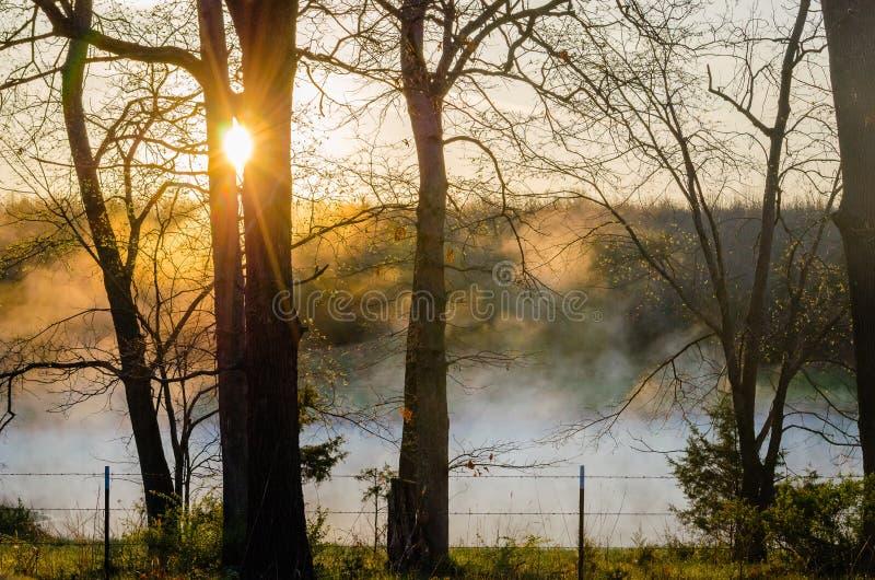 De Lentezonsopgang van Missouri royalty-vrije stock afbeeldingen