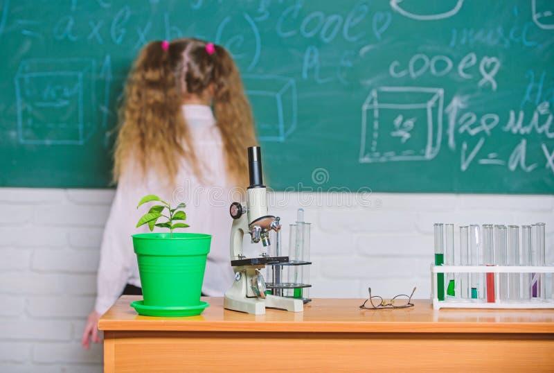 De les van de schoolbiologie De biologie van de jong geitjestudie met materiaal in school De Dag van de kennis Biologieconcept Mi royalty-vrije stock fotografie