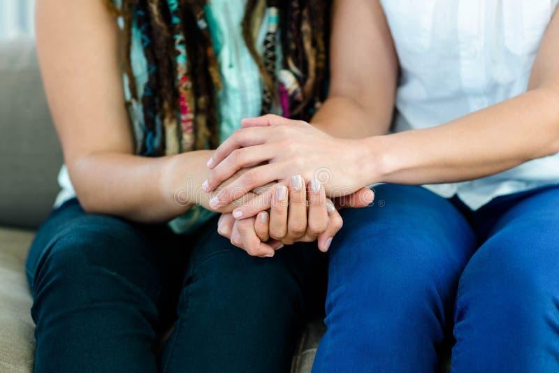 De lesbische handen van de paarholding stock afbeeldingen