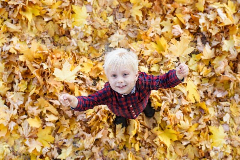 De leuke blonde jongenstribunes in de herfst gaat omhoog weg eruit en ziet Hoogste mening Het concept van de herfst Ge?soleerd royalty-vrije stock afbeelding