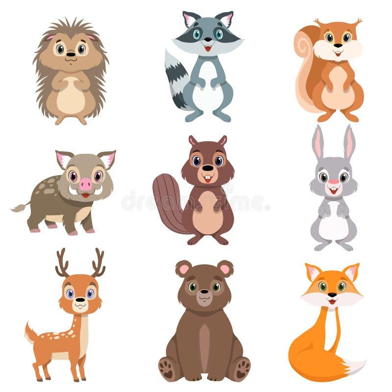 De leuke bos geplaatste dieren en de vogels, eekhoorn, hazen, beer, wasbeer, egel, vos, dragen, de karaktersvector van het herten stock illustratie