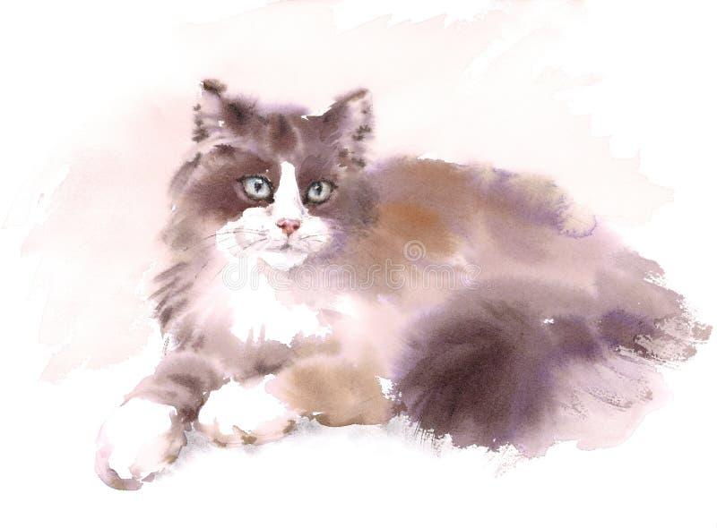 De leuke Cat Laying Down Watercolor Pet-Geschilderde Hand van de Portretillustratie royalty-vrije illustratie