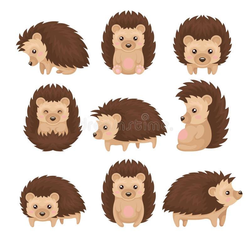 De leuke egel in divers stelt reeks, stekelig dierlijk beeldverhaalkarakter met grappige gezichts vectorillustratie op een wit stock illustratie