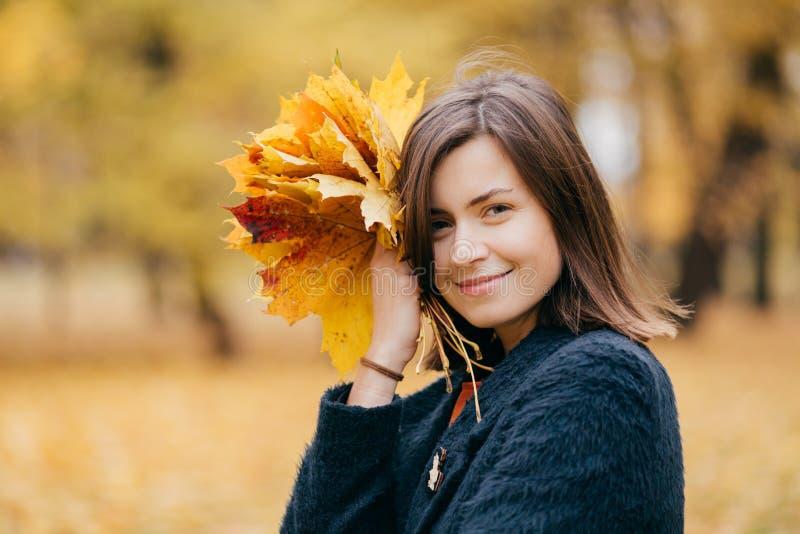 De leuke glimlachende jonge Europese vrouw heeft wandeling in park, geniet van zonnige dag tijdens de herfst, draagt gele bladere royalty-vrije stock fotografie