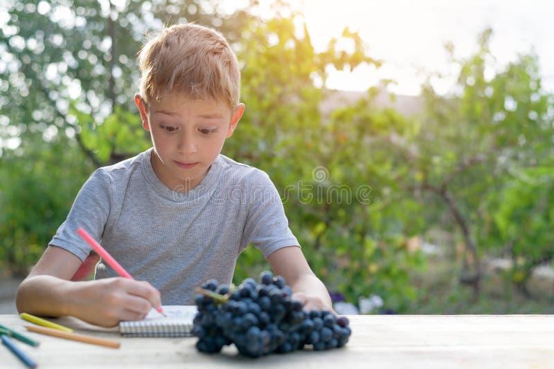 De leuke jongen trekt met potlodenstilleven Hand getrokken vectorillustratie Tuin op de achtergrond Creatief concept royalty-vrije stock afbeeldingen