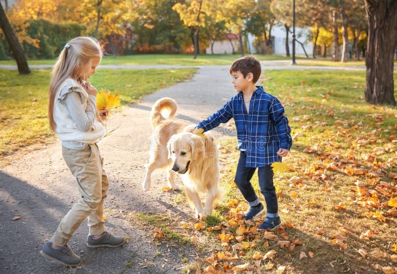 De leuke kinderen met hond in de herfst parkeren stock foto