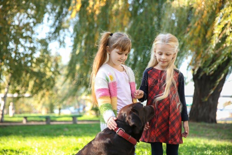 De leuke meisjes met hond in de herfst parkeren royalty-vrije stock afbeeldingen